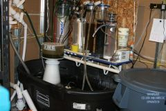 090410 Picture of my Sump area