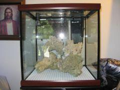 Cube Reef Build 2