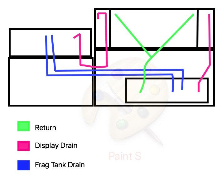 tank setup.jpg